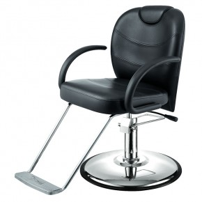 """KNIGHT"" All-Purpose Chair (Free Shipping)"
