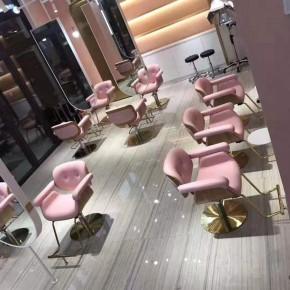 Modern Style Salon Chair